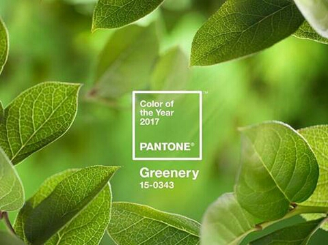 image 1 retrieved from @pantone