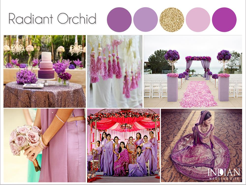 Radiant-Orchid-Indian-Wedding-Palette