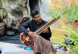Sitar by Ronobir